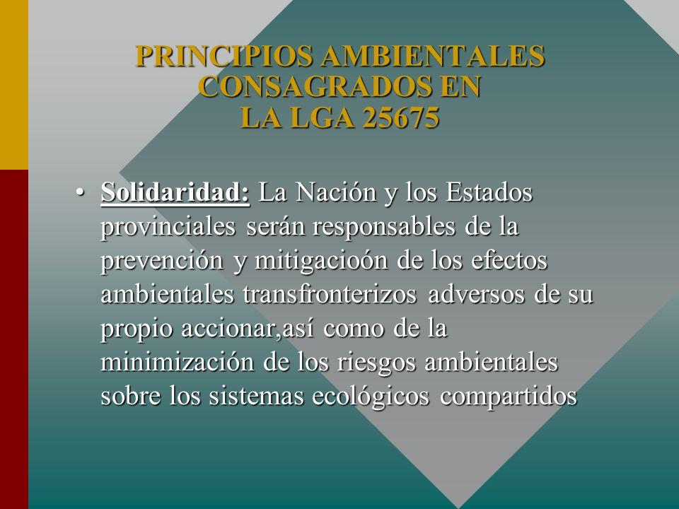 Solidaridad: La Nación y los Estados provinciales serán responsables de la prevención y mitigacioón de los efectos ambientales transfronterizos advers