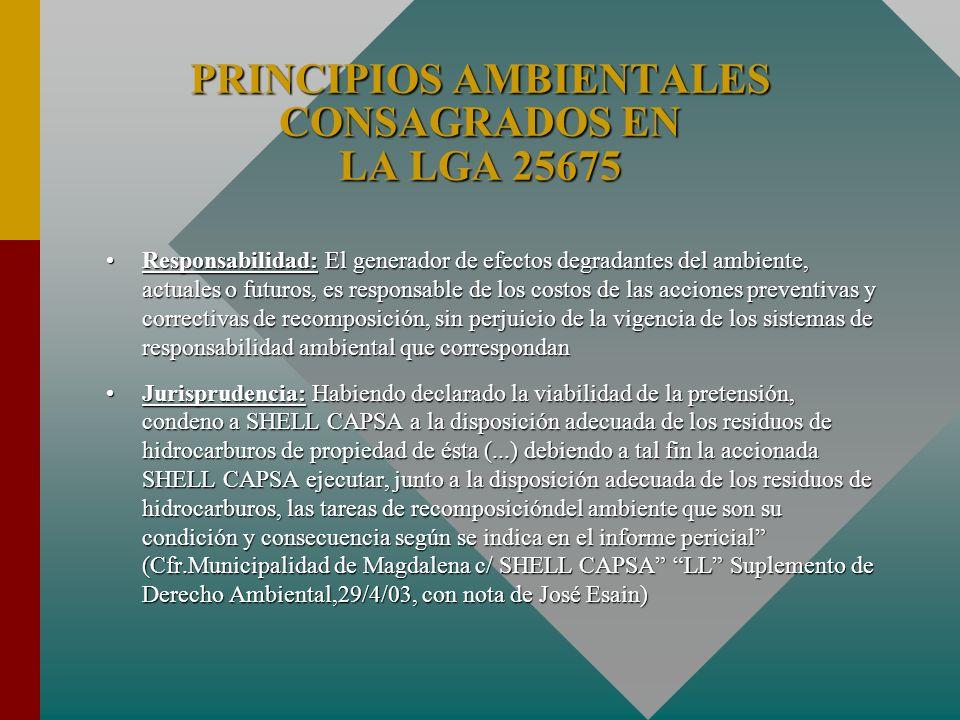 PRINCIPIOS AMBIENTALES CONSAGRADOS EN LA LGA 25675 Responsabilidad: El generador de efectos degradantes del ambiente, actuales o futuros, es responsab