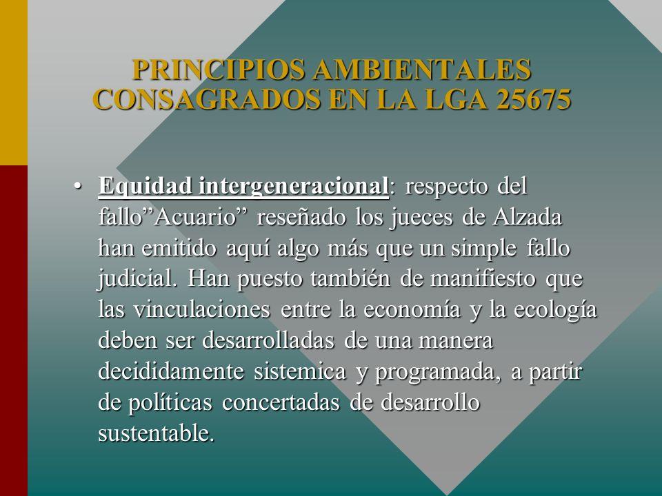 Equidad intergeneracional: respecto del falloAcuario reseñado los jueces de Alzada han emitido aquí algo más que un simple fallo judicial. Han puesto