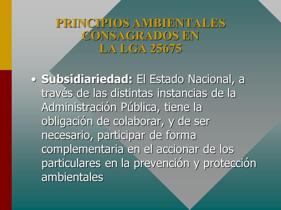 PRINCIPIOS AMBIENTALES CONSAGRADOS EN LA LGA 25675 Subsidiariedad: El Estado Nacional, a través de las distintas instancias de la Administración Públi