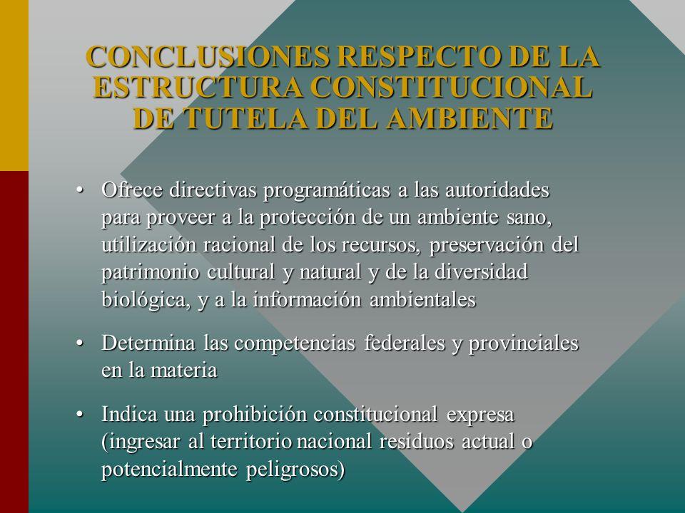 Ofrece directivas programáticas a las autoridades para proveer a la protección de un ambiente sano, utilización racional de los recursos, preservación