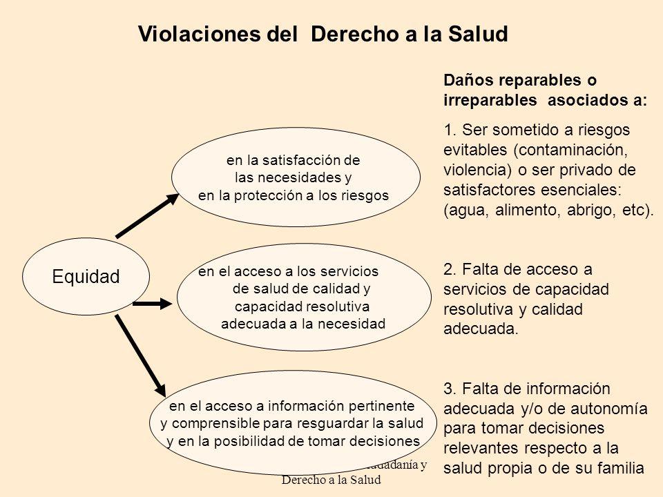 DeCiDeS: Democracia Ciudadanía y Derecho a la Salud Violaciones del Derecho a la Salud en la satisfacción de las necesidades y en la protección a los