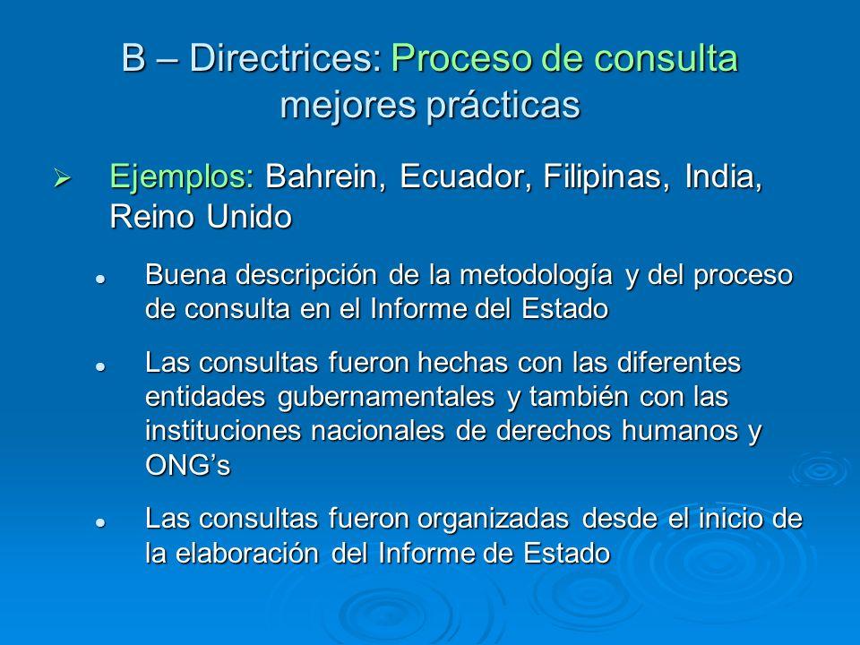 B – Directrices: Proceso de consulta mejores prácticas Ejemplos: Bahrein, Ecuador, Filipinas, India, Reino Unido Ejemplos: Bahrein, Ecuador, Filipinas