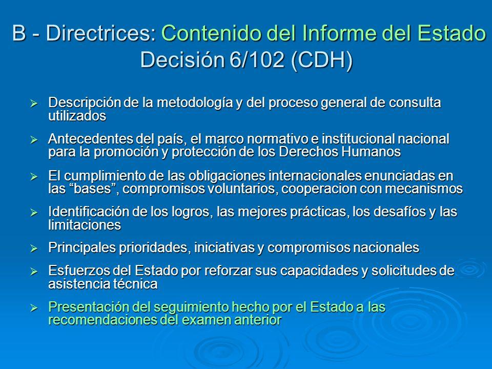 B - Directrices: Contenido del Informe del Estado Decisión 6/102 (CDH) B - Directrices: Contenido del Informe del Estado Decisión 6/102 (CDH) Descripc