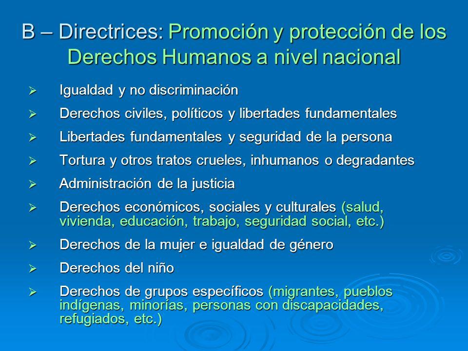 B – Directrices: Promoción y protección de los Derechos Humanos a nivel nacional Igualdad y no discriminación Igualdad y no discriminación Derechos ci