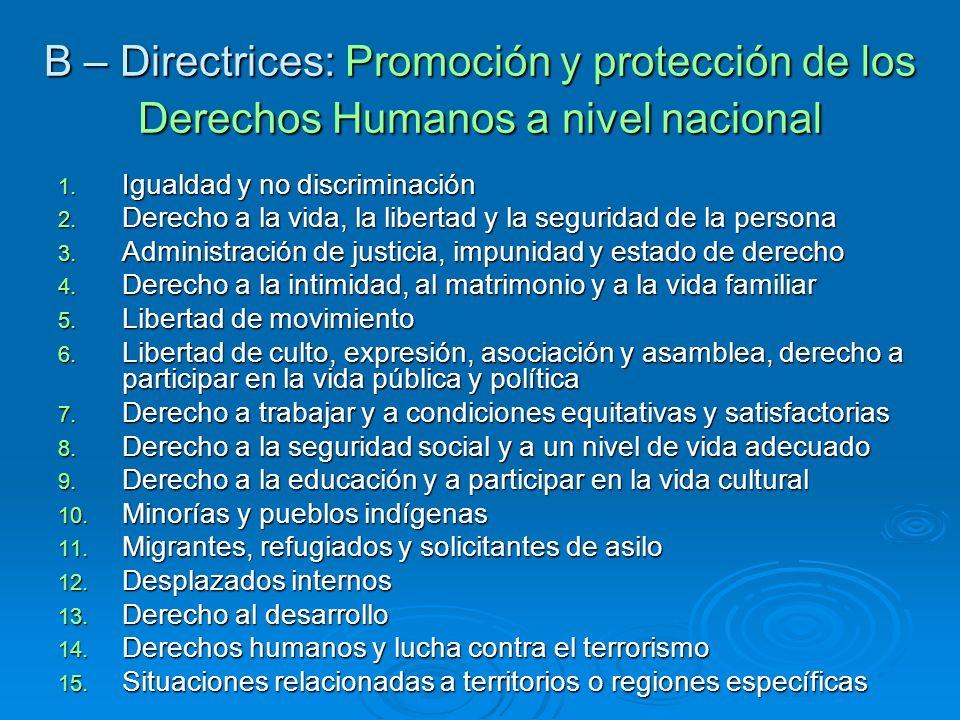 B – Directrices: Promoción y protección de los Derechos Humanos a nivel nacional 1. Igualdad y no discriminación 2. Derecho a la vida, la libertad y l