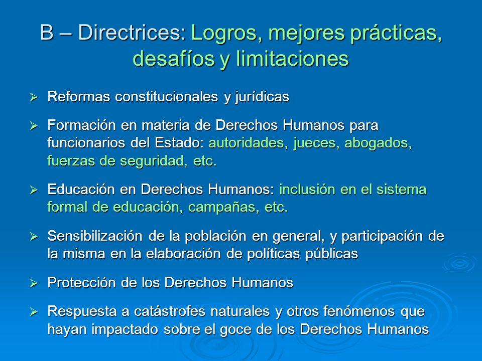 B – Directrices: Logros, mejores prácticas, desafíos y limitaciones Reformas constitucionales y jurídicas Reformas constitucionales y jurídicas Formac