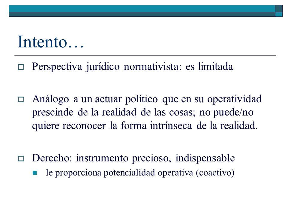 Intento… Perspectiva jurídico normativista: es limitada Análogo a un actuar político que en su operatividad prescinde de la realidad de las cosas; no