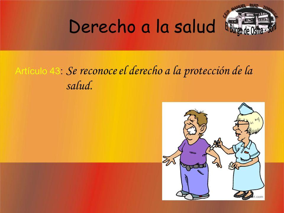 Deber de protección a los hijos Artículo 39.3: Los padres deben prestar asistencia de todo orden a los hijos.