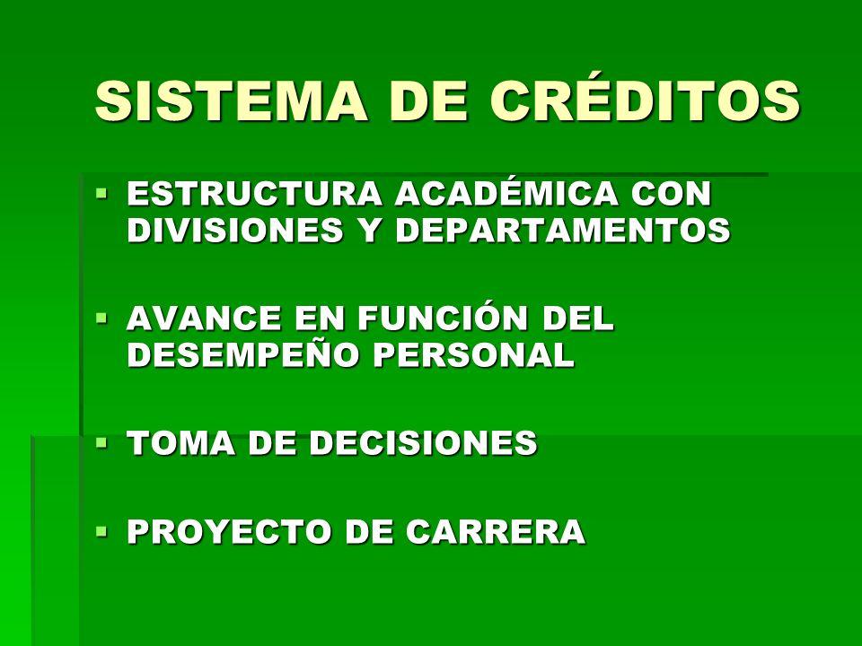 SISTEMA DE CRÉDITOS ESTRUCTURA ACADÉMICA CON DIVISIONES Y DEPARTAMENTOS ESTRUCTURA ACADÉMICA CON DIVISIONES Y DEPARTAMENTOS AVANCE EN FUNCIÓN DEL DESEMPEÑO PERSONAL AVANCE EN FUNCIÓN DEL DESEMPEÑO PERSONAL TOMA DE DECISIONES TOMA DE DECISIONES PROYECTO DE CARRERA PROYECTO DE CARRERA