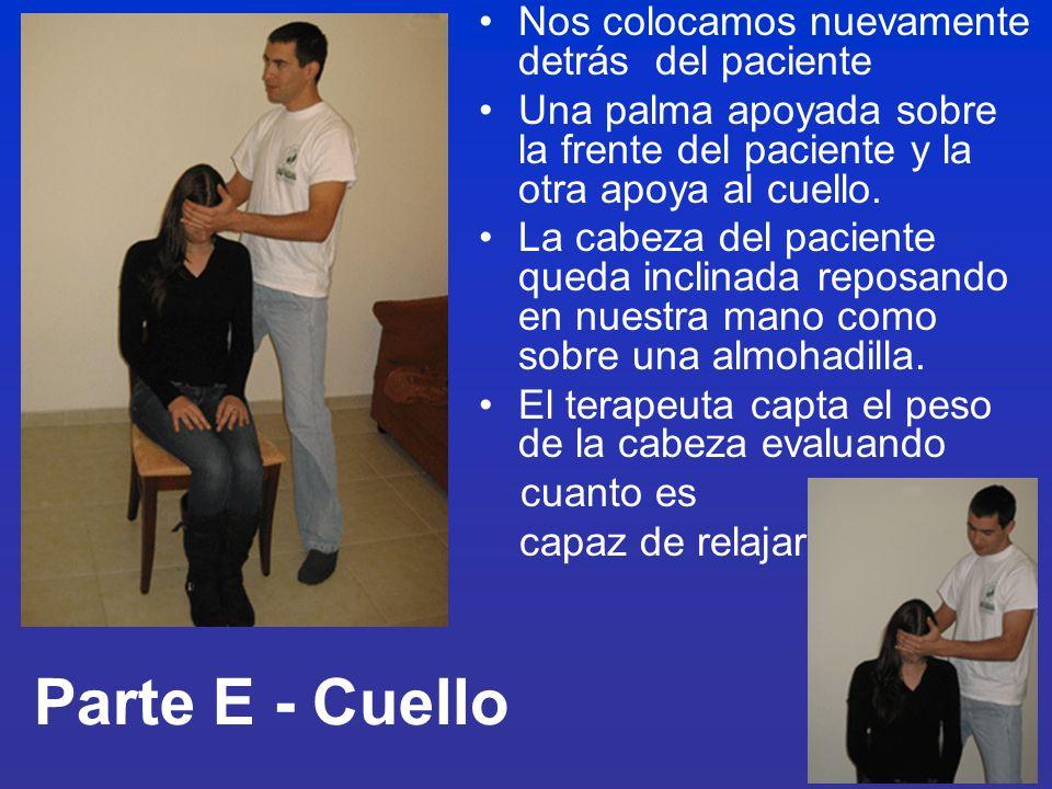 Parte E - Cuello Nos colocamos nuevamente detrás del paciente Una palma apoyada sobre la frente del paciente y la otra apoya al cuello. La cabeza del