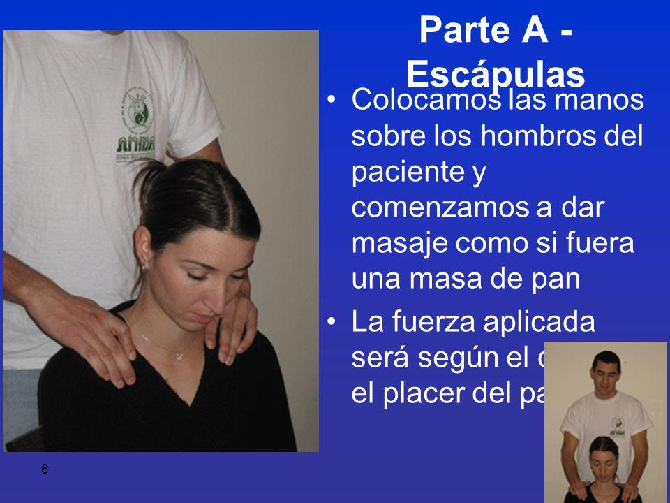 7 Distanciaremos al paciente del respaldo, con el fin de enderezar nuestros brazos Con las palmas presionamos sobre los hombros bajando a ambos lados de la columna vertebral Repetimos el ejercicio varias veces.