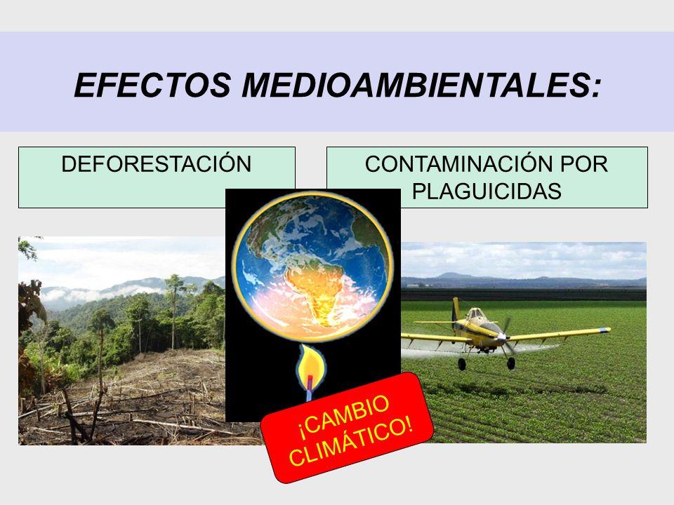 EFECTOS MEDIOAMBIENTALES: CONTAMINACIÓN POR PLAGUICIDAS DEFORESTACIÓN ¡CAMBIO CLIMÁTICO!