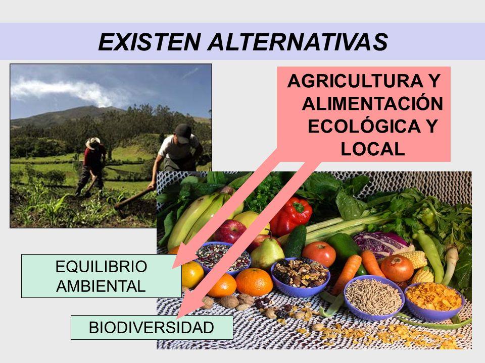 EXISTEN ALTERNATIVAS AGRICULTURA Y ALIMENTACIÓN ECOLÓGICA Y LOCAL BIODIVERSIDAD EQUILIBRIO AMBIENTAL
