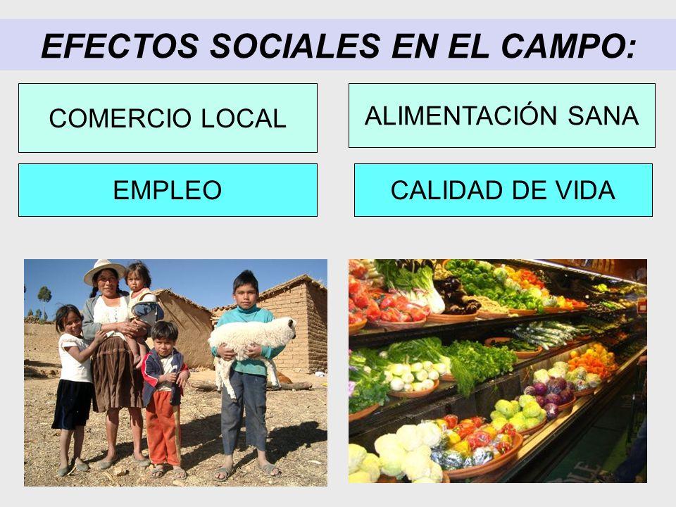 EFECTOS SOCIALES EN EL CAMPO: CALIDAD DE VIDAEMPLEO COMERCIO LOCAL ALIMENTACIÓN SANA
