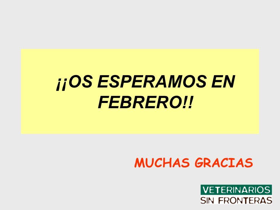 ¡¡OS ESPERAMOS EN FEBRERO!! MUCHAS GRACIAS