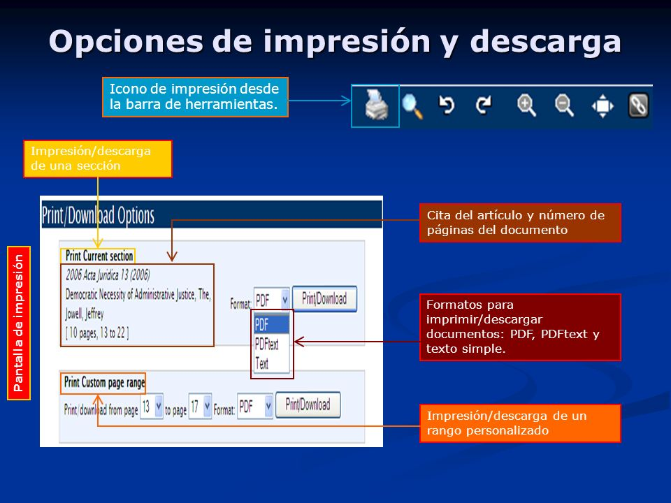 Opciones de impresión y descarga Icono de impresión desde la barra de herramientas.