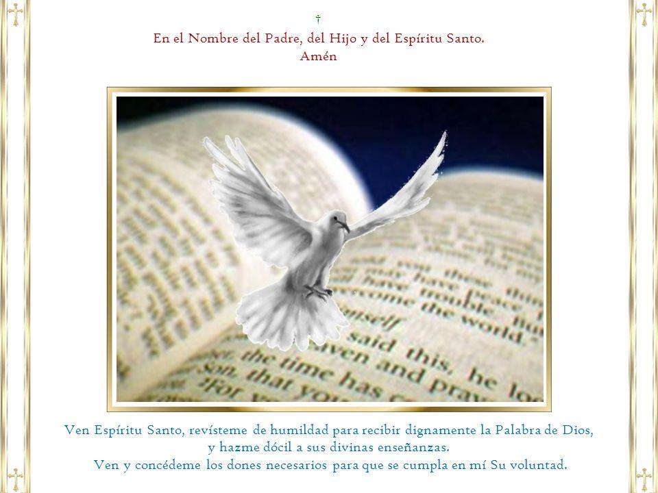 1 Este es mi Servidor, a quien yo sostengo, mi elegido, en quien se complace mi alma.