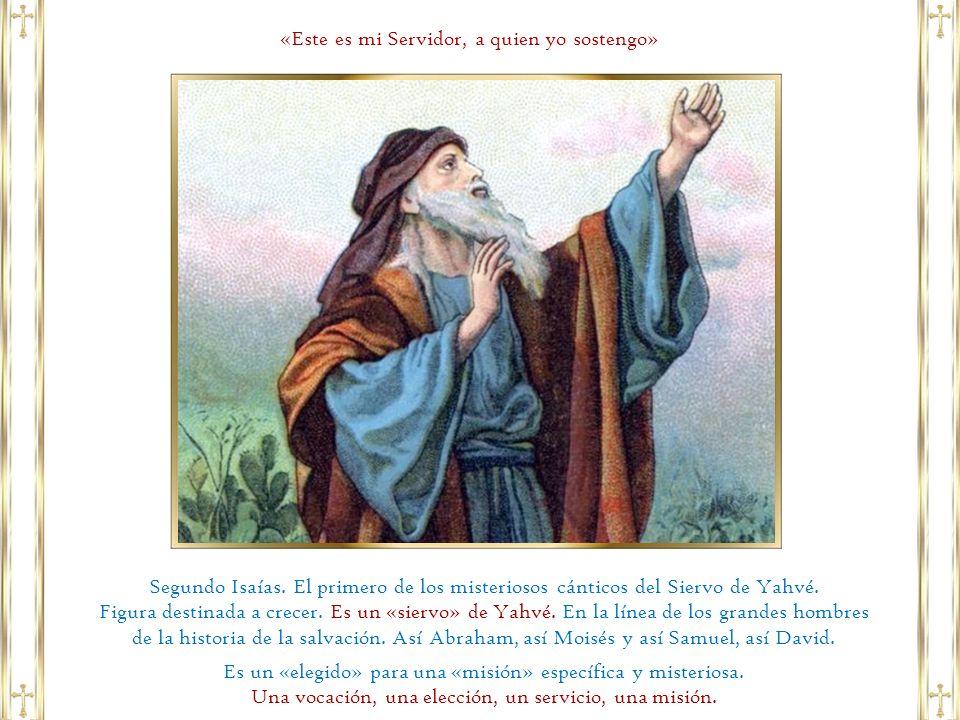 «Tú eres mi Hijo muy querido, en ti tengo puesta toda mi predilección».