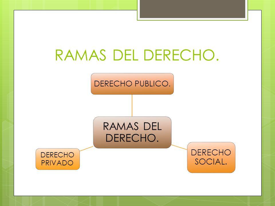 RAMAS DEL DERECHO. DERECHO PUBLICO. DERECHO SOCIAL. DERECHO PRIVADO