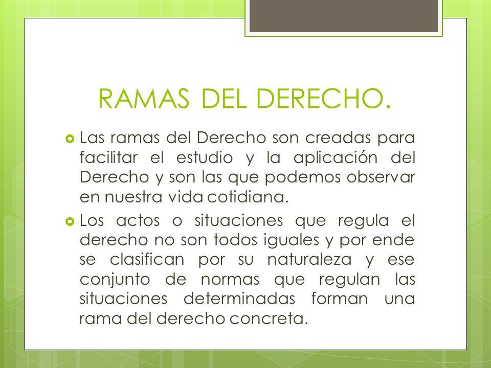 RAMAS DEL DERECHO.
