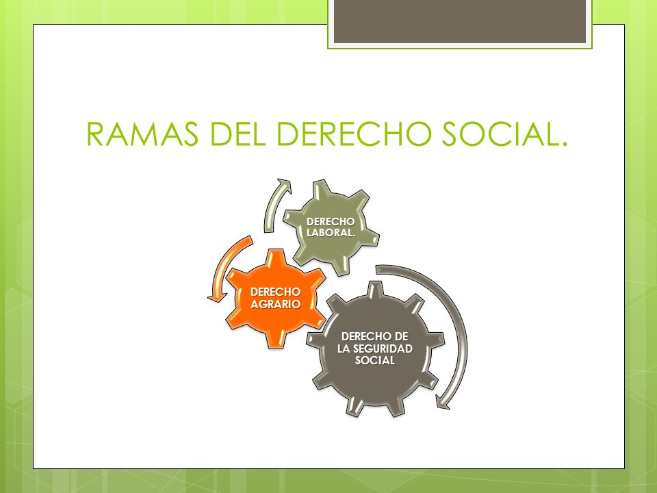 RAMAS DEL DERECHO SOCIAL. DERECHO DE LA SEGURIDAD SOCIAL DERECHO AGRARIO DERECHO LABORAL.
