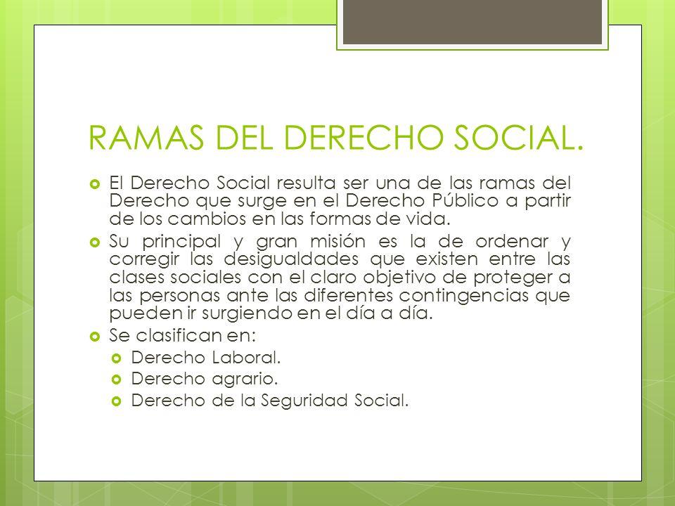RAMAS DEL DERECHO SOCIAL. El Derecho Social resulta ser una de las ramas del Derecho que surge en el Derecho Público a partir de los cambios en las fo