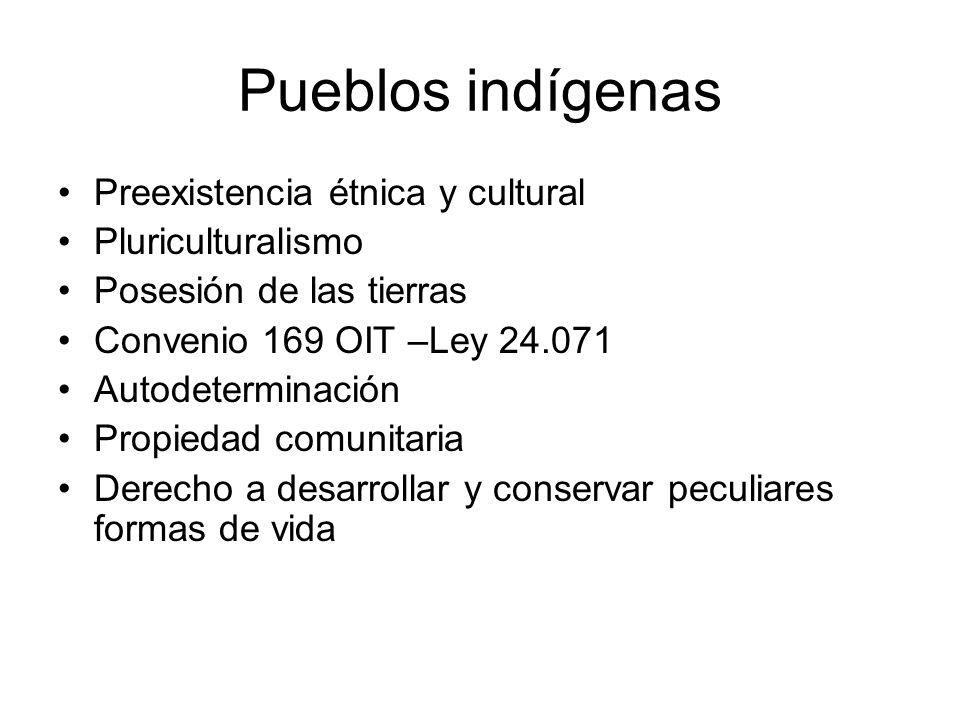 Pueblos indígenas Preexistencia étnica y cultural Pluriculturalismo Posesión de las tierras Convenio 169 OIT –Ley 24.071 Autodeterminación Propiedad c