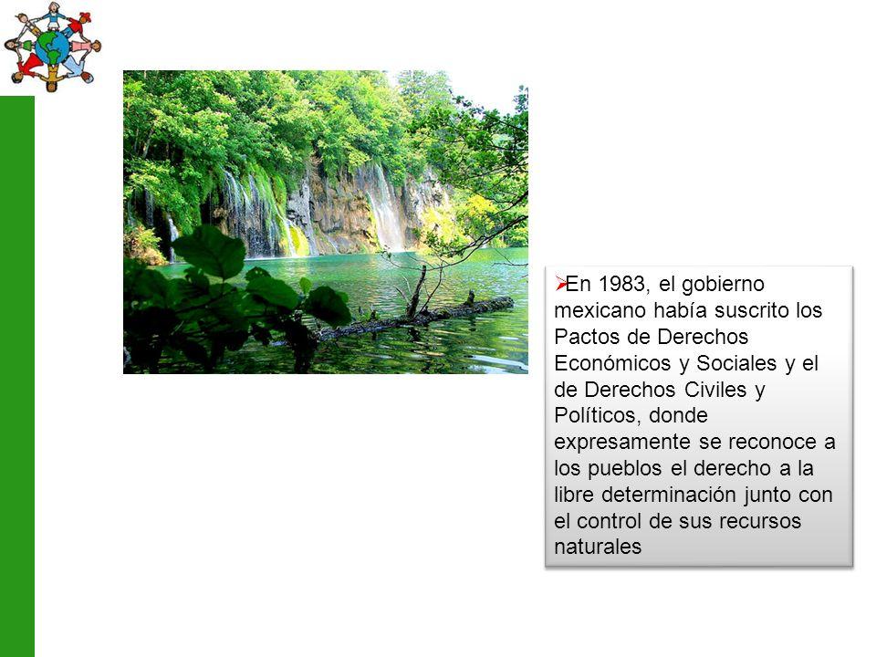 En 1983, el gobierno mexicano había suscrito los Pactos de Derechos Económicos y Sociales y el de Derechos Civiles y Políticos, donde expresamente se reconoce a los pueblos el derecho a la libre determinación junto con el control de sus recursos naturales
