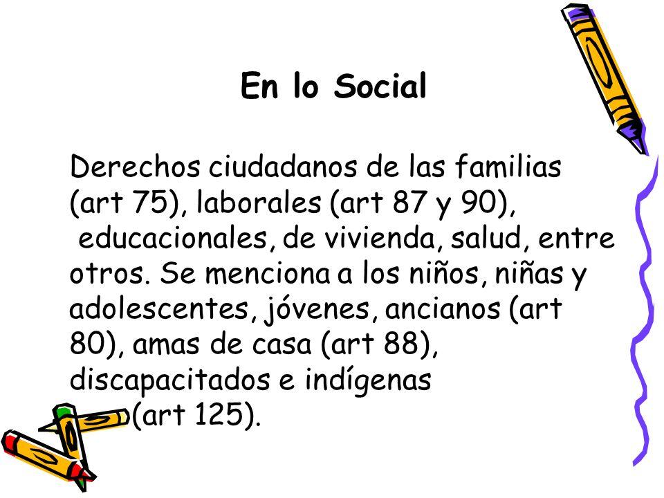 En lo Social Derechos ciudadanos de las familias (art 75), laborales (art 87 y 90), educacionales, de vivienda, salud, entre otros. Se menciona a los