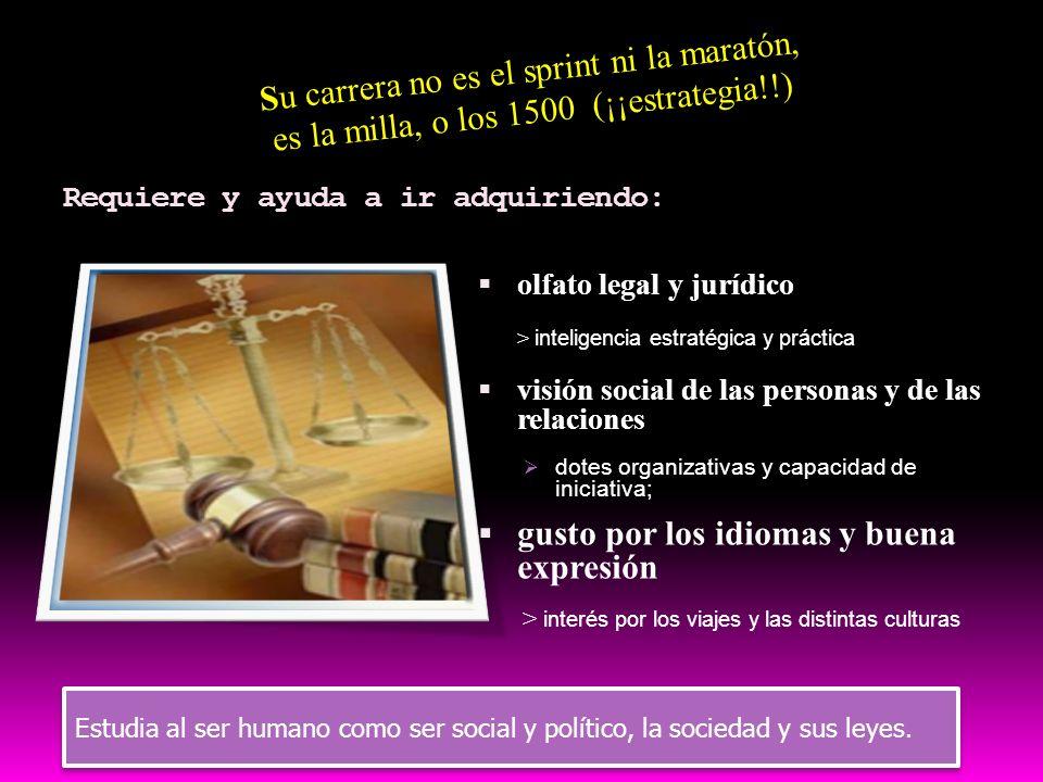 itinerario 3 socio-jurídico Derecho (la carrera con mayor número de estudiantes), Sociología, Psicología y Pedagogía Comunicación audiovisual, Periodi