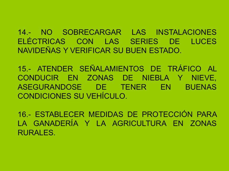 14.- NO SOBRECARGAR LAS INSTALACIONES ELÉCTRICAS CON LAS SERIES DE LUCES NAVIDEÑAS Y VERIFICAR SU BUEN ESTADO.