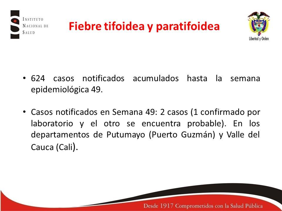 624 casos notificados acumulados hasta la semana epidemiológica 49.