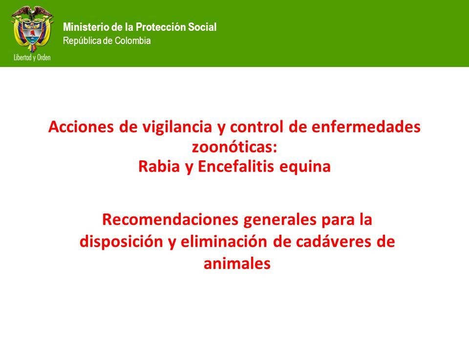 Ministerio de la Protección Social República de Colombia Acciones de vigilancia y control de enfermedades zoonóticas: Rabia y Encefalitis equina Recomendaciones generales para la disposición y eliminación de cadáveres de animales