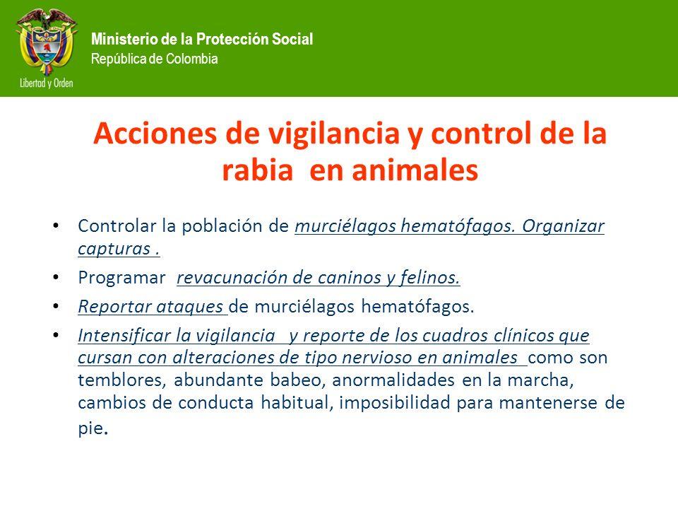 Ministerio de la Protección Social República de Colombia Acciones de vigilancia y control de la rabia en animales Controlar la población de murciélagos hematófagos.