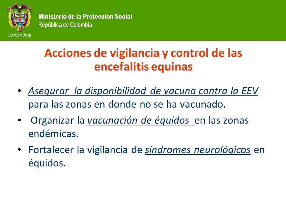 Ministerio de la Protección Social República de Colombia Acciones de vigilancia y control de las encefalitis equinas Asegurar la disponibilidad de vacuna contra la EEV para las zonas en donde no se ha vacunado.