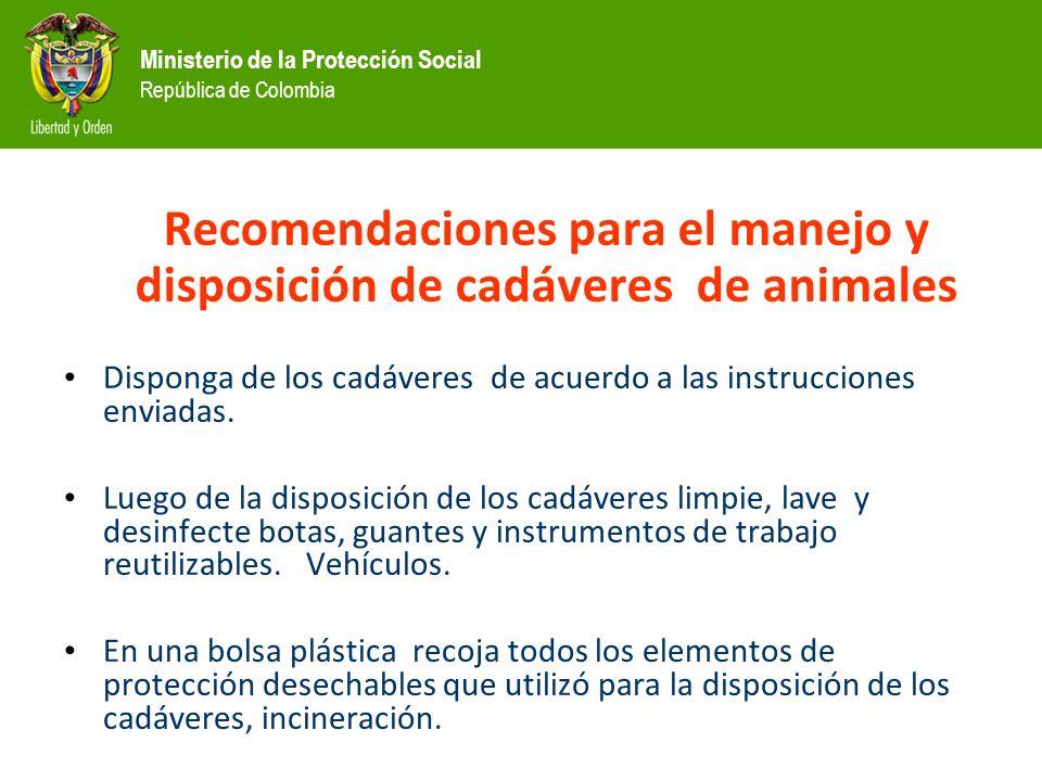 Ministerio de la Protección Social República de Colombia Recomendaciones para el manejo y disposición de cadáveres de animales Disponga de los cadáveres de acuerdo a las instrucciones enviadas.