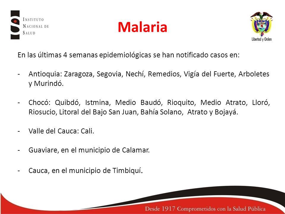 En las últimas 4 semanas epidemiológicas se han notificado casos en: -Antioquia: Zaragoza, Segovia, Nechí, Remedios, Vigía del Fuerte, Arboletes y Murindó.