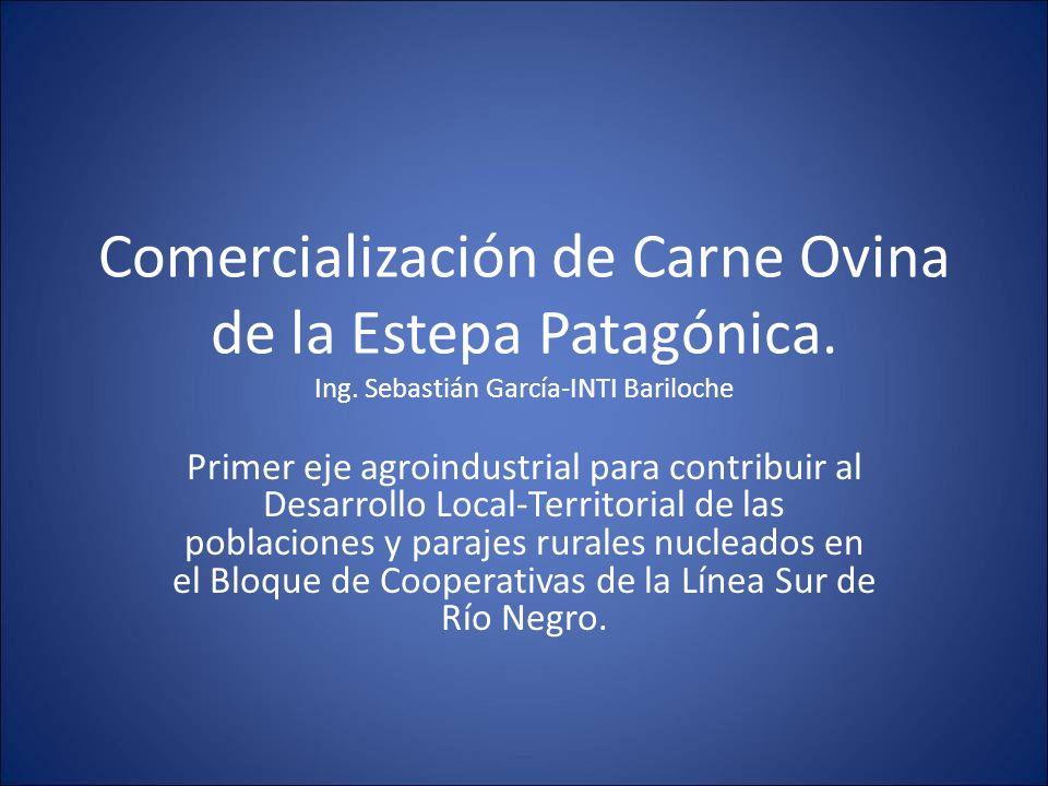 Comercialización de Carne Ovina de la Estepa Patagónica. Ing. Sebastián García-INTI Bariloche Primer eje agroindustrial para contribuir al Desarrollo