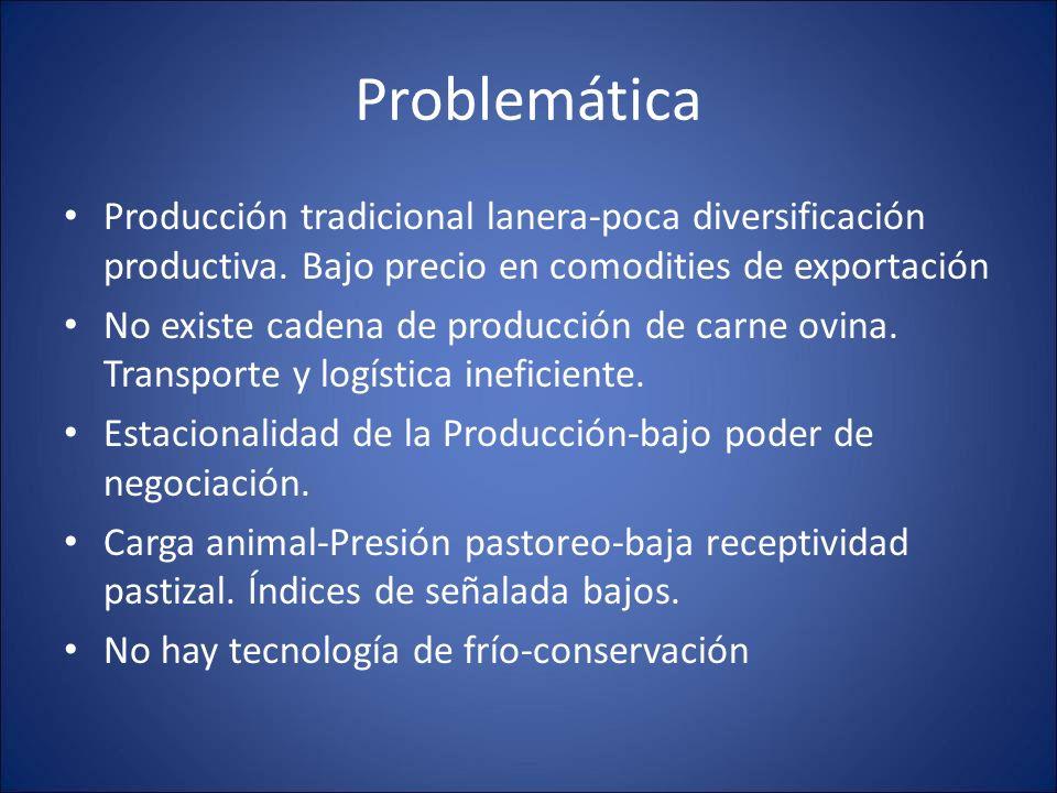 Problemática Producción tradicional lanera-poca diversificación productiva. Bajo precio en comodities de exportación No existe cadena de producción de