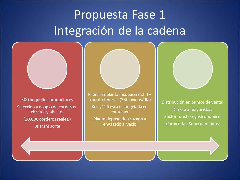 Propuesta Fase 1 Integración de la cadena 500 pequeños productores Seleccion y acopio de corderos- chivitos y abasto. (10.000 corderos reales.) BPTran