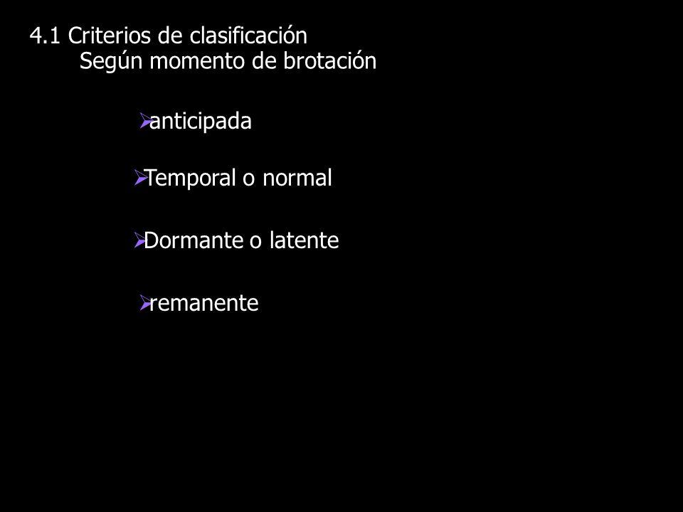 4.1 Criterios de clasificación Según momento de brotación anticipada Temporal o normal Dormante o latente remanente