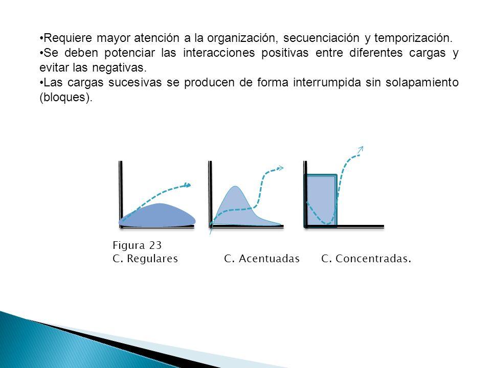 Progresión de las cargas La mejora del rendimiento se produce merced al incremento de las cargas de entrenamiento.