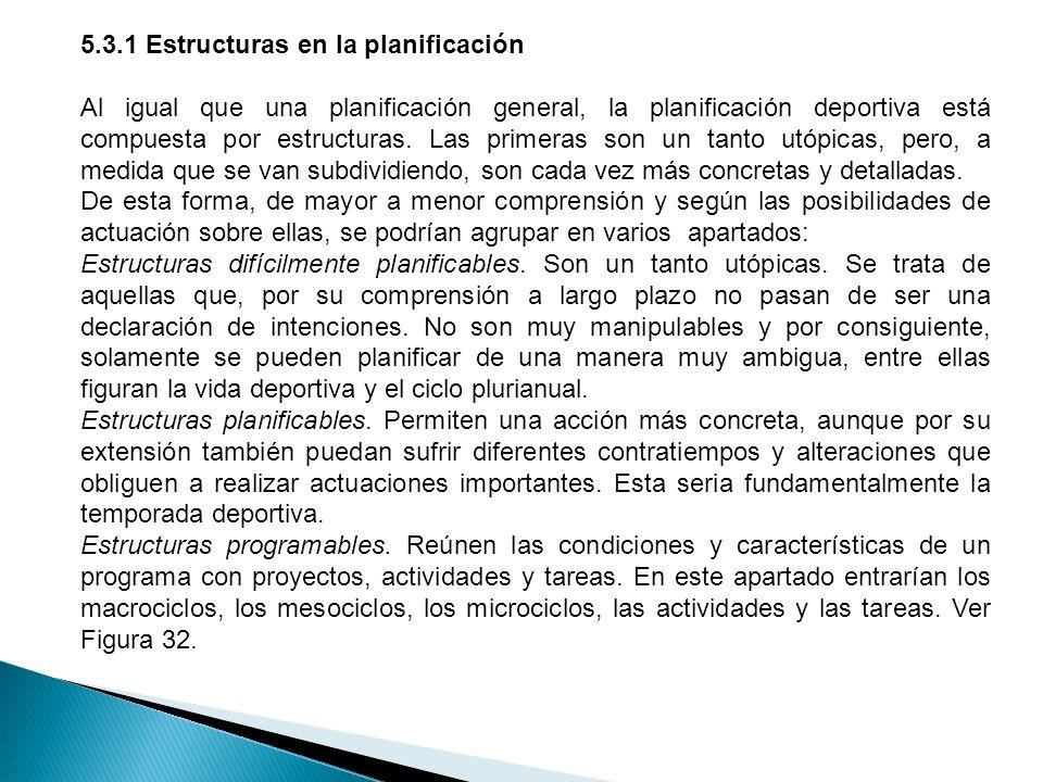 Figura 32. Estructura de una planificación deportiva a largo plazo. http://www.triatlonrosario.com/