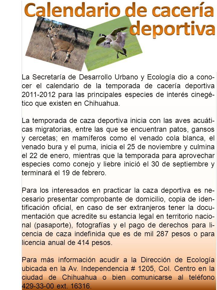La Secretaría de Desarrollo Urbano y Ecología dio a cono- cer el calendario de la temporada de cacería deportiva 2011-2012 para las principales especi