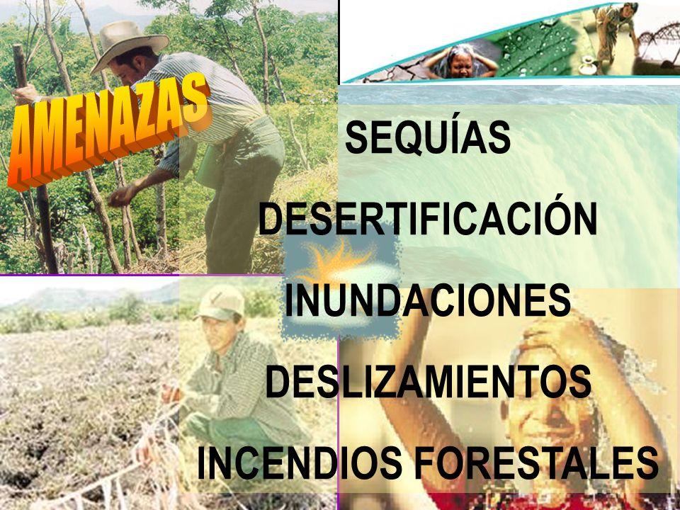2 SEQUÍAS DESERTIFICACIÓN INUNDACIONES DESLIZAMIENTOS INCENDIOS FORESTALES