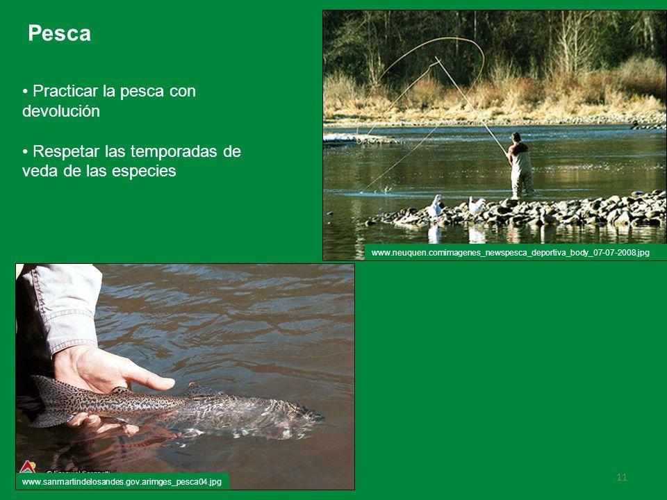 11 Pesca Practicar la pesca con devolución Respetar las temporadas de veda de las especies www.neuquen.comimagenes_newspesca_deportiva_body_07-07-2008.jpg www.sanmartindelosandes.gov.arimges_pesca04.jpg