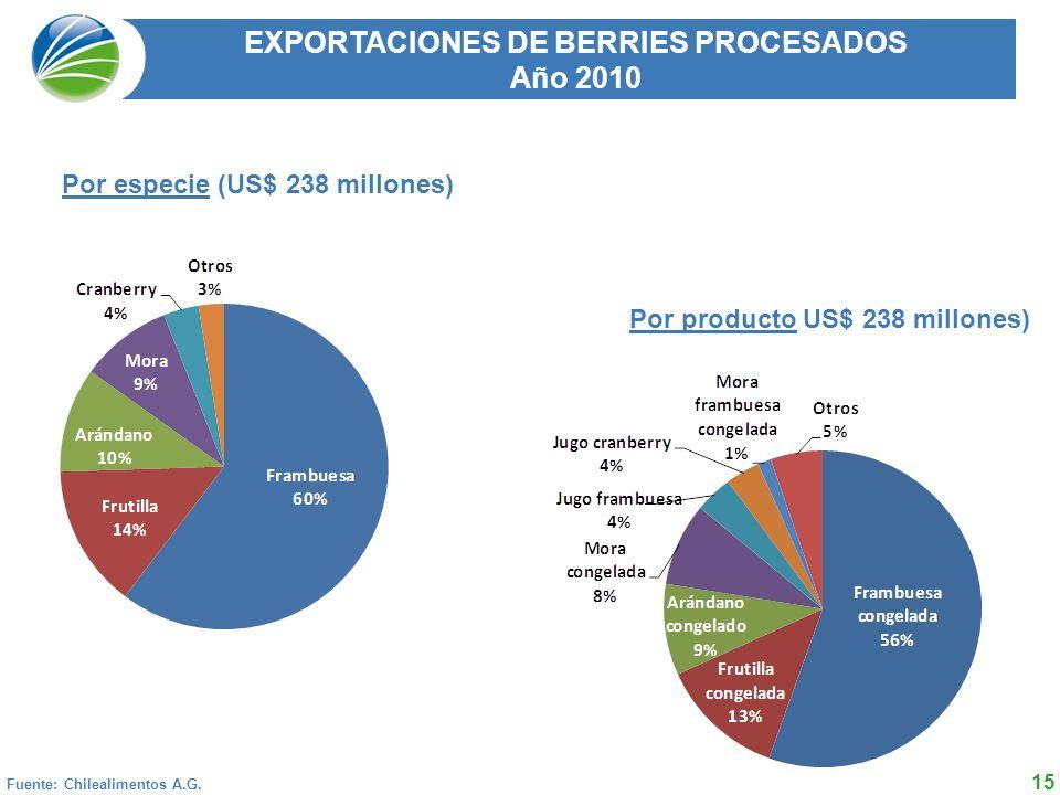 15 EXPORTACIONES DE BERRIES PROCESADOS Año 2010 Fuente: Chilealimentos A.G.