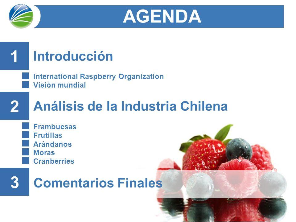2 Análisis de la Industria Chilena Frambuesas Frutillas Arándanos Moras Cranberries AGENDA 2 Comentarios Finales 3 Introducción International Raspberry Organization Visión mundial 1