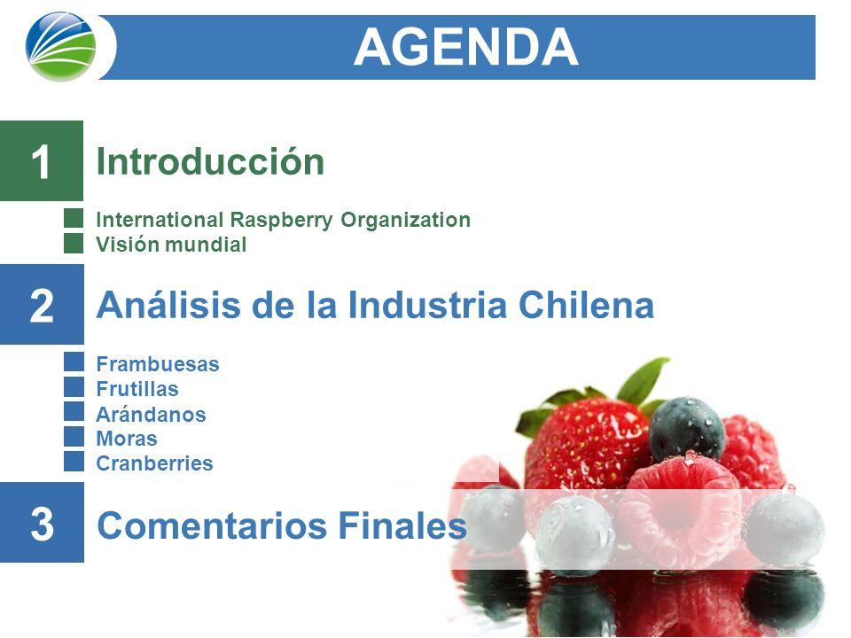 3 Análisis de la Industria Chilena Frambuesas Frutillas Arándanos Moras Cranberries AGENDA 2 Comentarios Finales 3 Introducción International Raspberry Organization Visión mundial 1